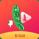 丝瓜视频鸭脖视频小猪视频app