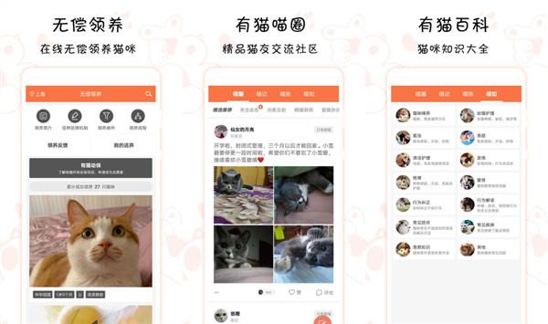 有猫app哪个版本好用?有猫app下载安装最好用!